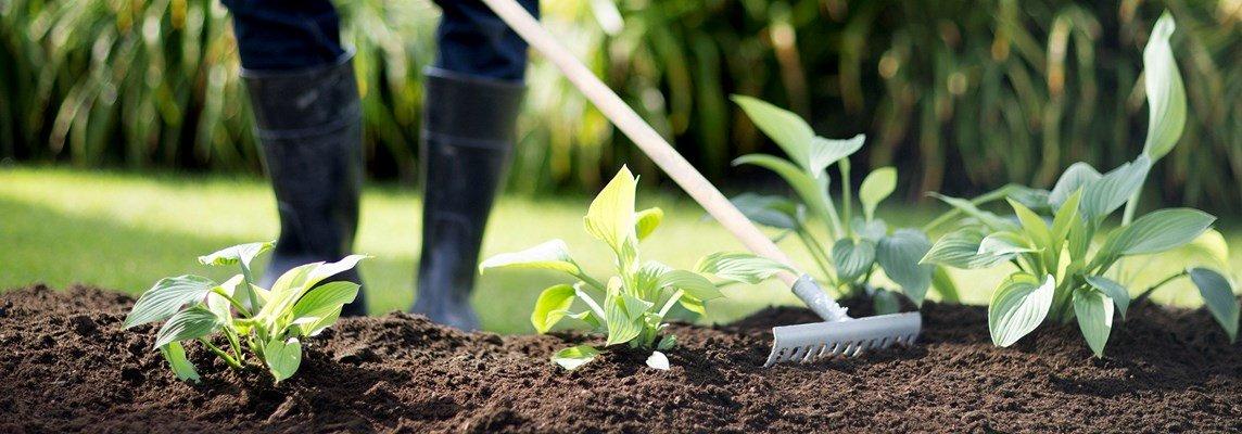 Rätt jord är A och O för en lyckad rabatt. Foto: Hasselfors Garden.